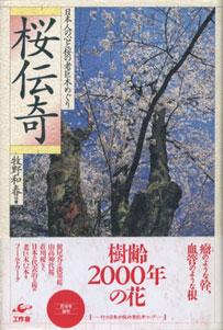桜伝奇 日本人の心と桜の老巨木めぐり