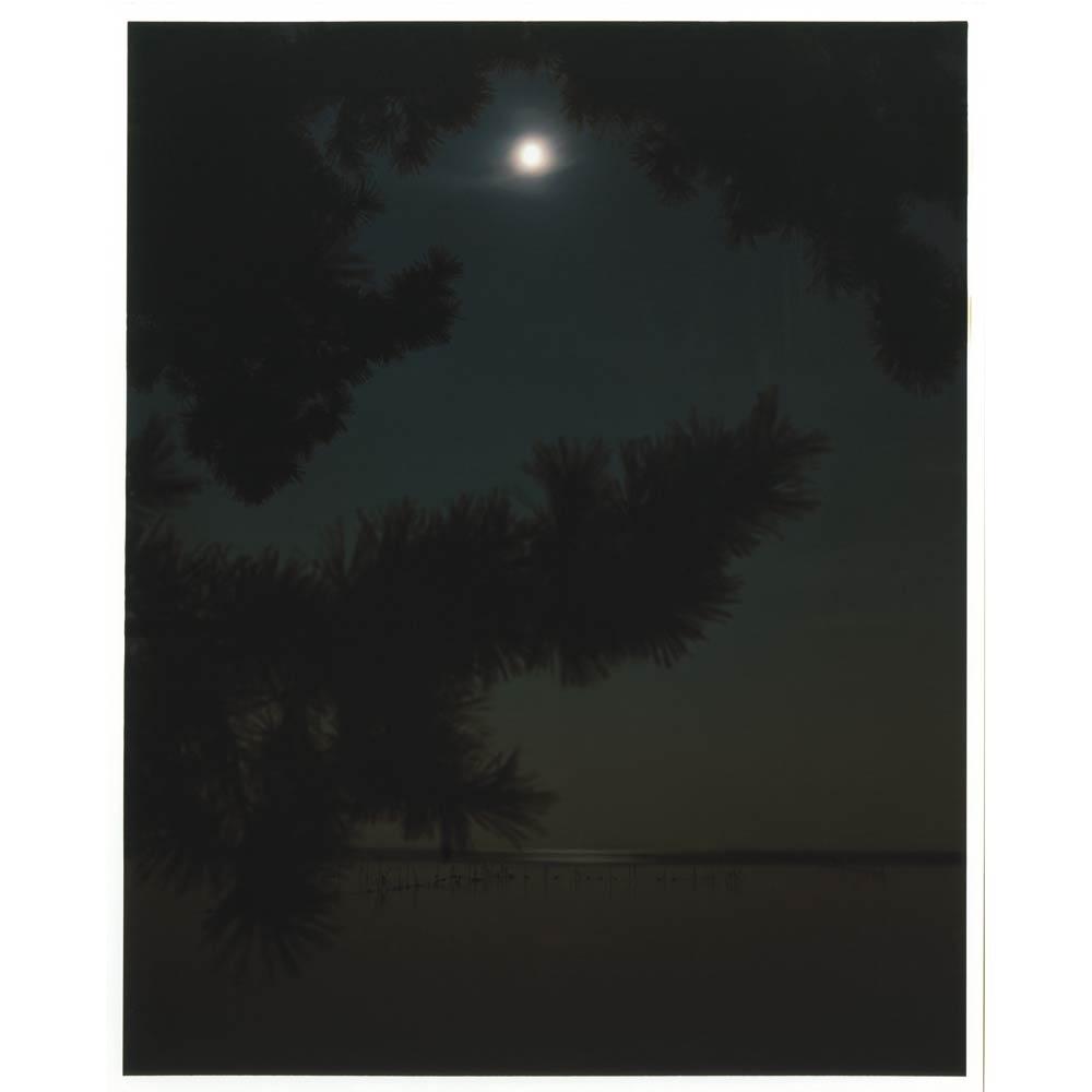 漕 kogi[image3]