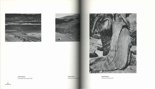Through Their Own Eyes The Personal Portfolios of Edward Weston and Ansel Adams[image2]