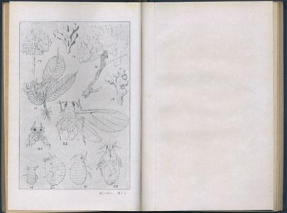 日本薬草採取栽培及利用法[image3]