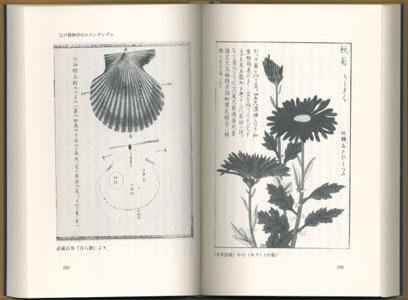 博物学の時代[image3]
