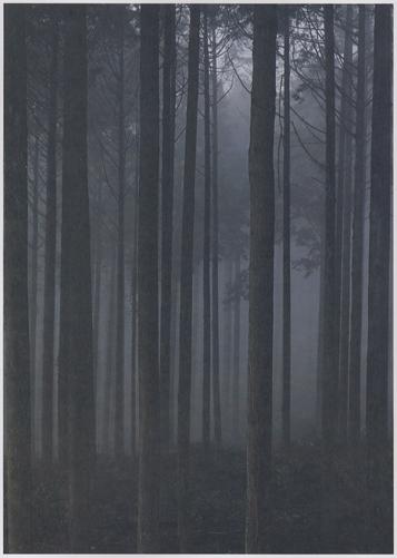 国立公園写真集 山紫水明[image5]