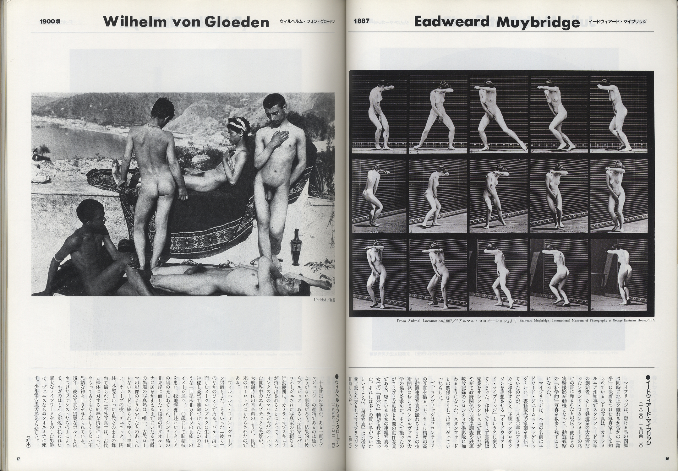 太陽 創刊28周年記念特大号 1991年7月号 NO.361[image2]