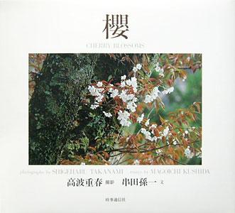 櫻 CHERRY BLOSSOMS