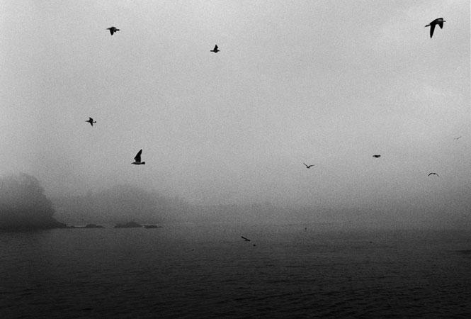 遠い水平線 On the Horizon[image3]