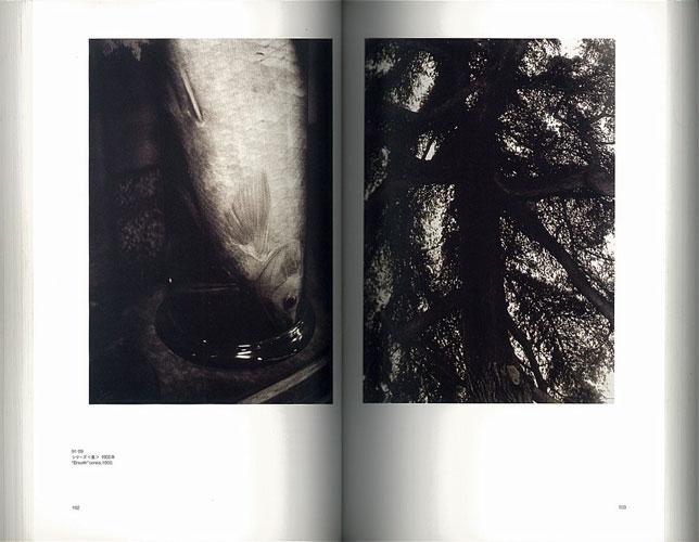 記憶/記録の漂流者たち 第3回東京国際写真ビエンナーレ[image5]