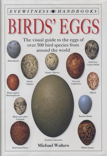 Birds' Eggs