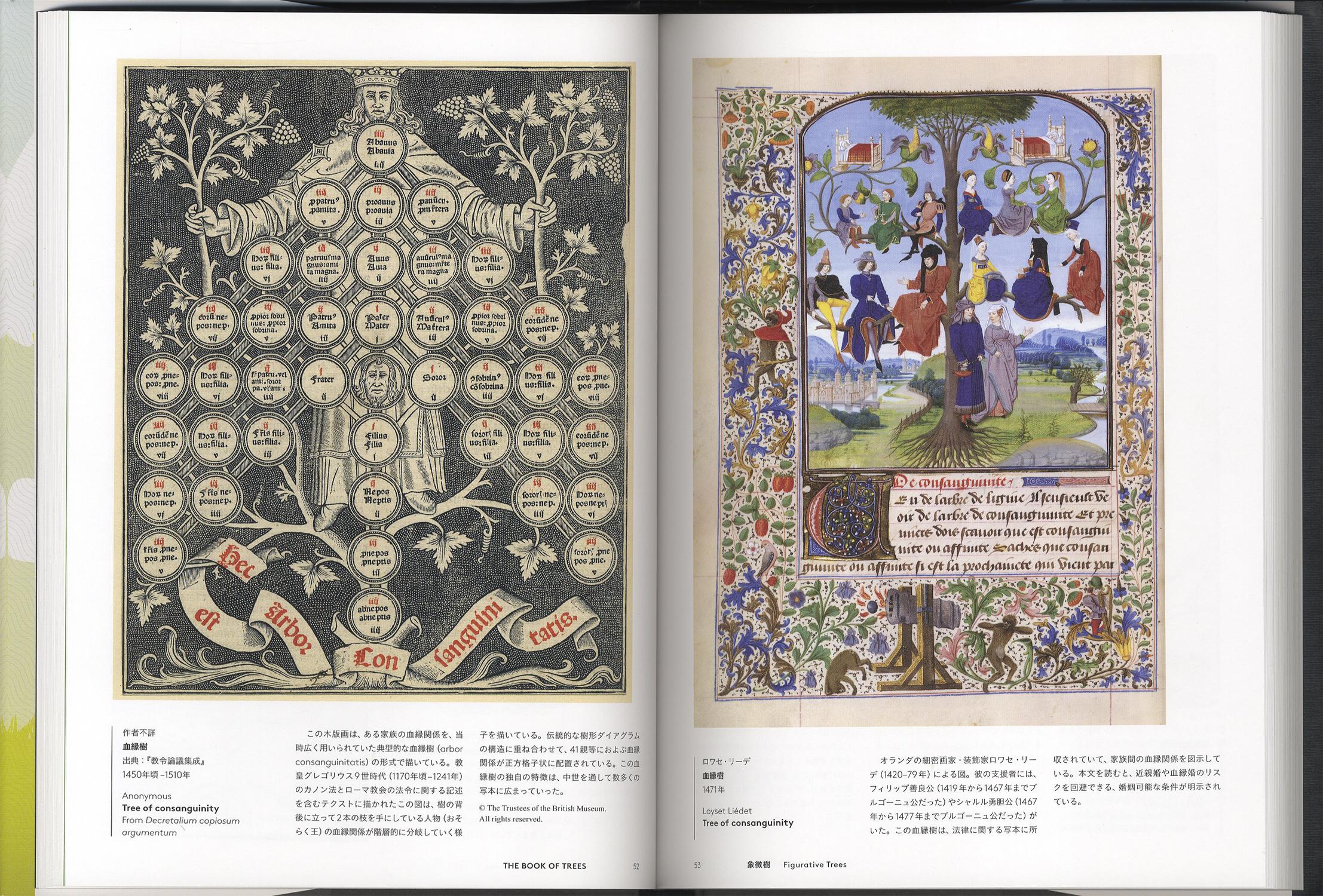 THE BOOK OF TREES 系統樹大全:知の世界を可視化するインフォグラフィックス[image3]