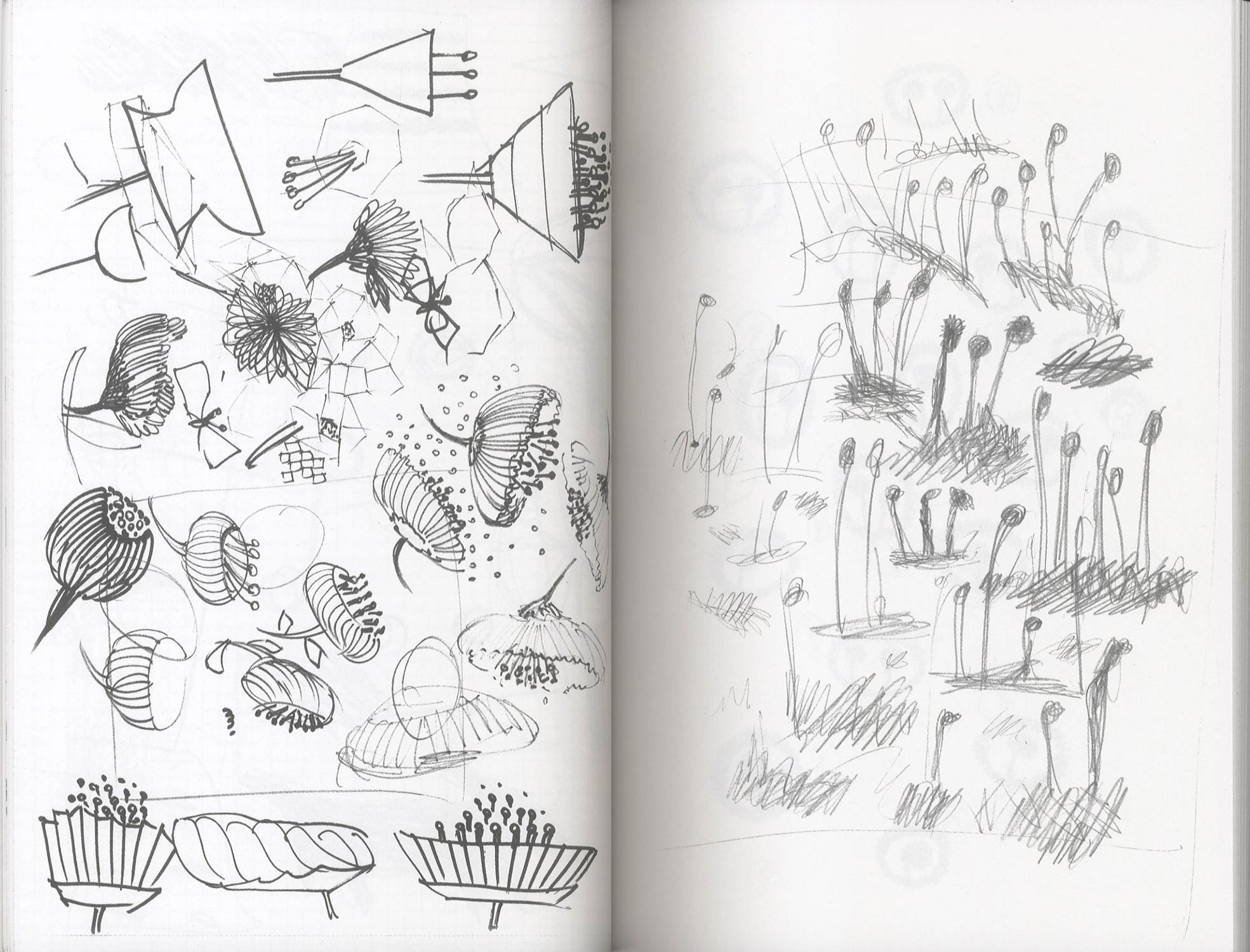 notes[image2]